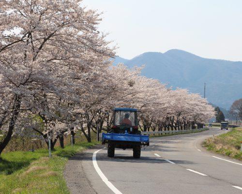 天栄山と森、湖に抱かれ、自然に近い毎日を。繋がり合う暮らしが実現する、福島県天栄村写真
