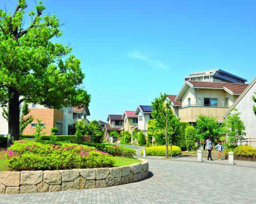 楽しいイベント実施中!秋葉原から40分、アクセス便利な茨城県つくばみらい市でお待ちしています写真